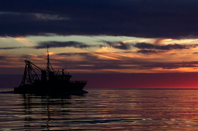 Spencer Gulf Prawn Fishery trawler at sunrise