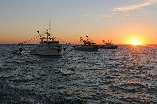 Trawler ships on the Spencer Gulf, South Australia at sunrise