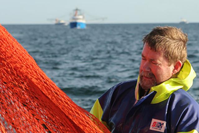 Fisherman with orange net catching Spencer gulf King Prawns