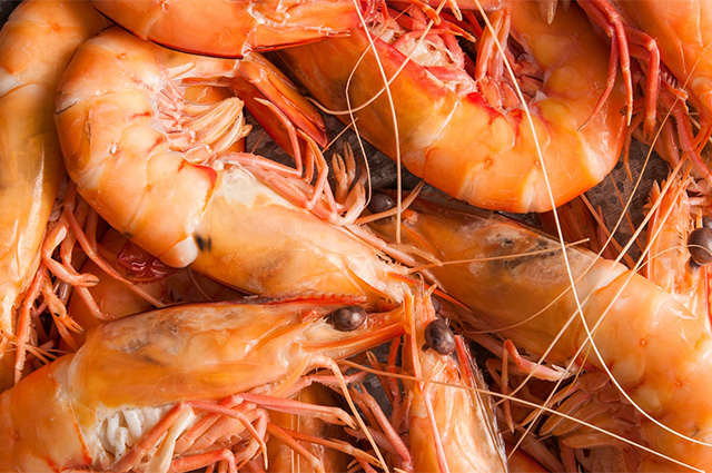 Close up of cooked Spencer Gulf King Prawns